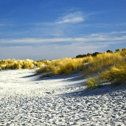 Playa codol foradat
